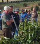 Avocado grower study group workshops are your chance to hear all the latest news & developments!