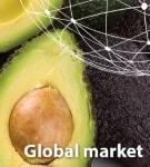 Guac_FreshPlaza markets 070717 135x150