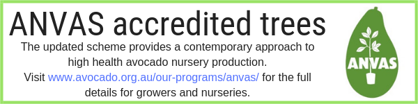 ANVAS program