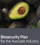 Avocado Industry Biosecurity Plan 3.0, 2020