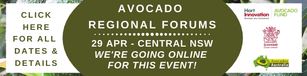 Regional Forums
