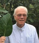 Ben Faber, University of California, in an avocado orchard