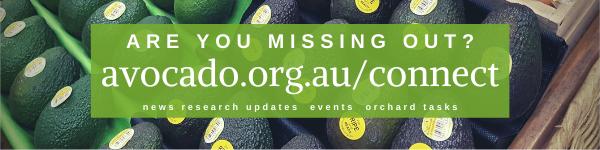Do you receive all of Avocados Australia's communications?